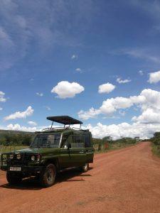 ルワンダの東の地域にある国立公園にて。